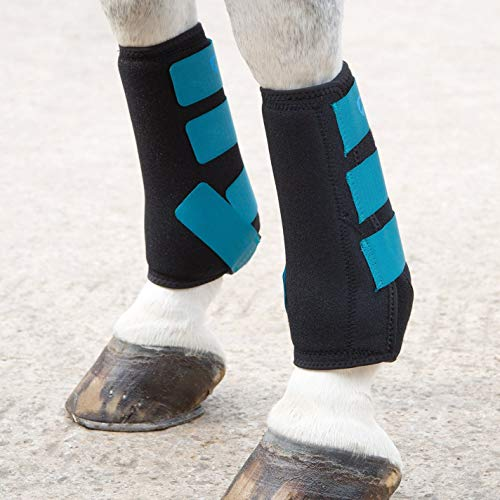 Shires ARMA Breathable Sports Exercise Boots Cob Teal by Shires