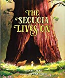 Search : The Sequoia Lives On