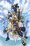 bribase shop Kingdom Hearts 2 3 Sora Organization XIII 13 Nice Silk Fabric Cloth Wall Poster Print (36x24inch)