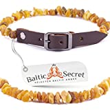 Baltic Amber Dog Cat Collar, Certified Raw Amber Gems That are 50% Richer and Higher in Value - from Baltic Secret/BRN28-30/