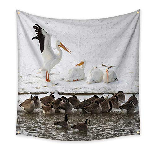 al Tapestry American White Pelicans Pelecanus erythrorhynchos and Canada Geese Branta Canadensis at The Bank of a Freezing strea 39W x 39L Inch ()
