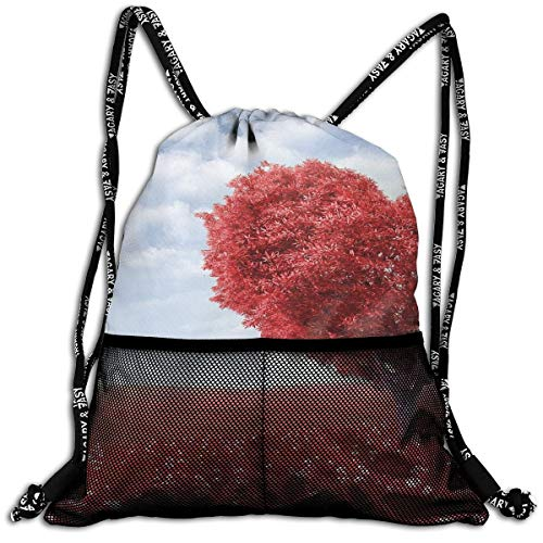 Girls Boys Drawstring Bag Theft Proof Lightweight Beam Bag, Sport Shoulder Backpack - Red Love Heart Tree Waterproof Backpack Soccer Basketball Bag]()