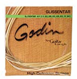 Godin Guitars 17751 Phosphor Bronze Electric Guitar Strings, Medium