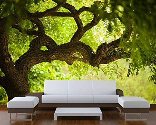Startonight Mural Wall Art Photo Decor Tree on the Green Landscape Large 8-feet 4-inch By 12-feet Wall Mural for Living Room or Bedroom by Mural Wall Art (Image #7)