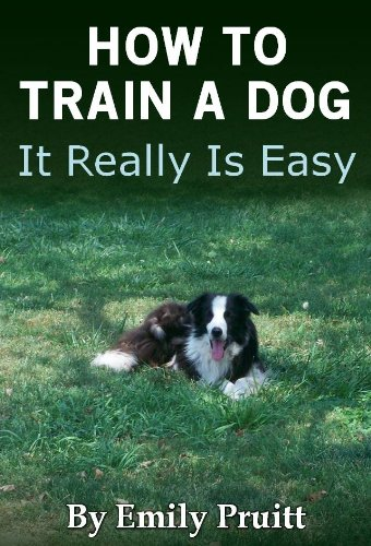 How To Train A Dog - It Really Is Easy by [Pruitt, Emily, Pruitt, Todd]