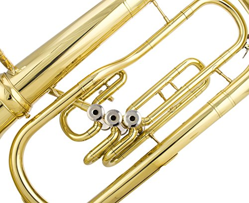 Glory Advanced GEU3M Bb Flat Marching Euphonium with Case and Mouthpiece,Gold finish,Click to see more Choice