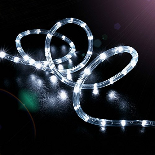 Solar 100 Led White Rope Lights in Florida - 7