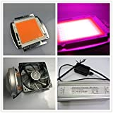 led world 200W 380-840nm Full spectrum High power led+dimmer driver+heat sink fans with100mm lens kits DIY
