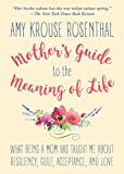 img - for Mother's Guide to the Meaning of Life: What Being a Mom Has Taught Me About Resiliency, Guilt, Acceptance, and Love book / textbook / text book