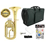 D'Luca 860L3 860 Series Brass Eb Alto Horn with Rose Brass Lead Pipe, Professional Case, Cleaning Kit, Gold