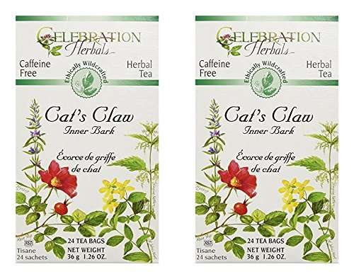 Cats Claw Tea Bags (Celebration Herbals Cats Claw Inner Bark, 48 Herbal Tea Bags (2 packs of 24))