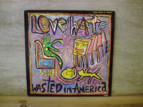 Price comparison product image LOVE / HATE - WASTED IN AMERICA - 12 inch vinyl