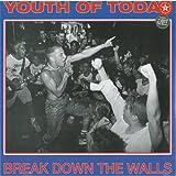 Break Down the Walls [Vinyl]