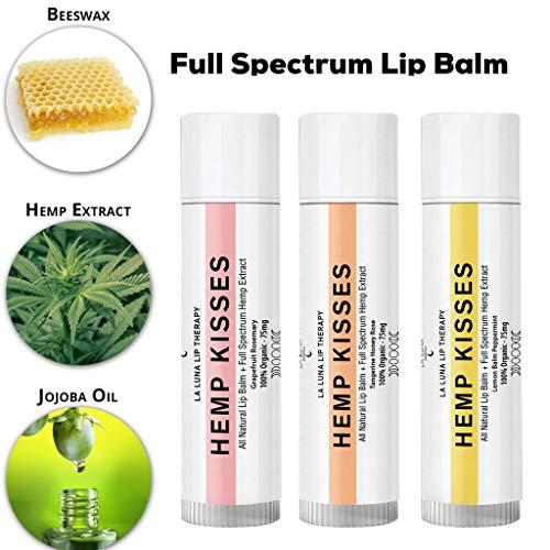 Organic Hemp Lip Balm | Natural Beeswax Lip Balm Set | All Natural Lip Balm w/Jojoba Oil, Coconut Oil & Essential Oils | Best Hemp Chapstick for Dry, Chapped & Cracked Lips | Lip Repair | 3 Pack