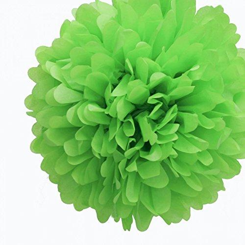 Dress My Cupcake 5-Inch Kiwi Green Tissue Paper Pom Poms, Luau Decorations/Luau Party Supplies and Decorating Ideas, Set of (Party Decorating Ideas)