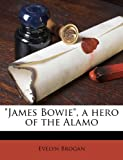 James Bowie , a Hero of the Alamo, Evelyn Brogan, 1175579130