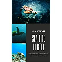 Sea Life Turtle: Explore Turtles Swim Freely Under the Sea, Perfect for Kids and Adults, A Picture Book for Relaxation and Staying Clam and Cool