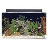 SeaClear 29 gal Show Acrylic Aquarium Combo Set, 30 by 12 by 18'', Clear