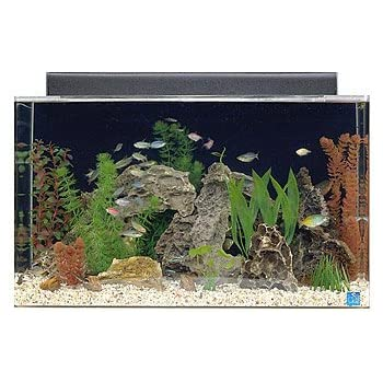 "SeaClear 29 gal Show Acrylic Aquarium Combo Set, 30 by 12 by 18"", Clear"