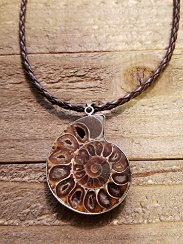 (Fossil Ammonite Pendant Leather Necklace Stone Jewelry Boho (N664))