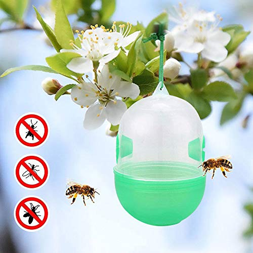 Quaanti 3X Hornets Trap Bee Catcher Home Garden Hanging Wasp Trap No Poison Chemical Free Bee Bug Harmless Fly Catcher Insect Traps (Green)