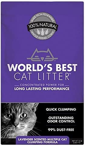 Top 10 Best Cat Litters Reviews in 2020 2