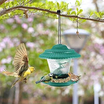 STKJ Comedero Colgante De Plástico para Pájaros, Contenedor De Comida para Pájaros A Prueba De Agua Al Aire Libre, Alimentador De Pájaros Estilo Linterna De Decoración De Jardín: Amazon.es: Hogar