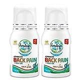 Amrutanjan Back Pain Roll on