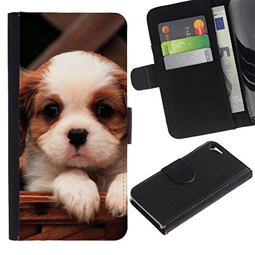 Billetera de Cuero Caso Titular de la tarjeta Carcasa Funda para Apple Iphone 5 / 5S / Cavalier King Charles Spaniel Cute Puppy / STRONG