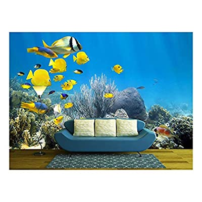 Magnificent Technique, Underwater Coral Reef Scenery with Colorful School of Fish, Made With Top Quality