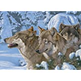Wolves of Winter - 1000 Piece Puzzle