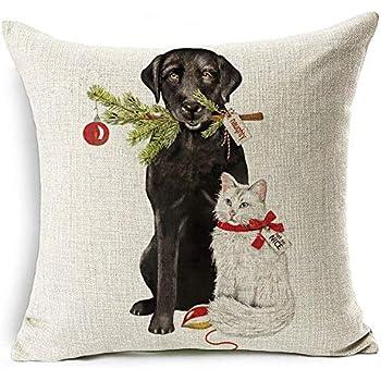 Amazon.com: Emvency Decorative Throw Pillow Cover Square