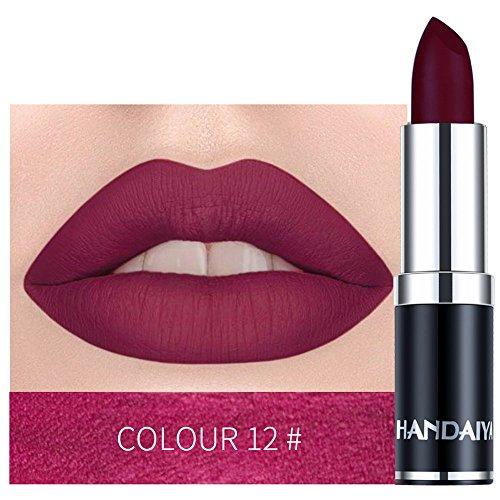 (Wensy 12 color matte Waterproof Lipstick Lipstick Eat Earth Rich Vitamin E,Hydrating Satin Lipstick Moistu Lip Gloss(Multicolour-L))