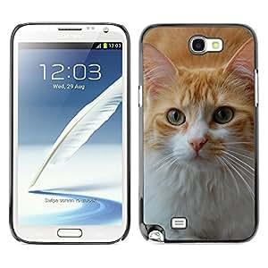 Super Stella Slim PC Hard Case Cover Skin Armor Shell Protection // M00107413 Cat Animal Pet Cute Kitten Domestic // Samsung Galaxy Note 2 II N7100