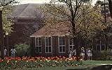 Northeast Missouri State University - Campus in Spring Kirksville Original Vintage Postcard