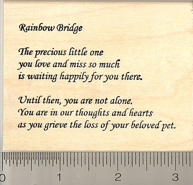amazon com rainbow bridge sympathy text pet loss rubber stamp