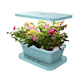 Docheer Indoor Smart Herb Garden with 6 Basil Cartridges Hydroponics / Soil Indoor Flowers/Vegetable Planter Growing Lamp, LED Indoor Hydroponics Grower Kit 6 Pod System (Blue)