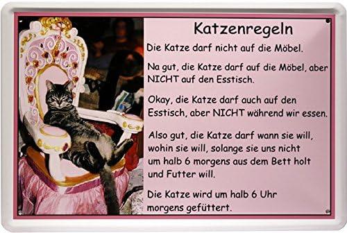 Diseño de gato con texto de gatos reglas 20 x 30 cm publicidad Retro chapa 1256: Amazon.es: Hogar