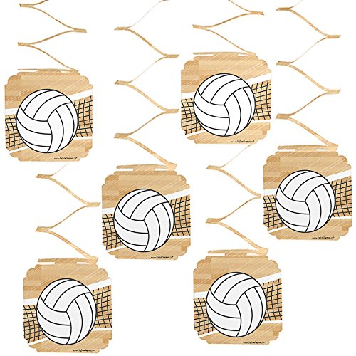 (Big Dot of Happiness Bump, Set, Spike - Volleyball - Baby Shower or Birthday Party Hanging Decorations - 6)