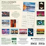 Pema Chodron 2020 Wall Calendar: Awakening the