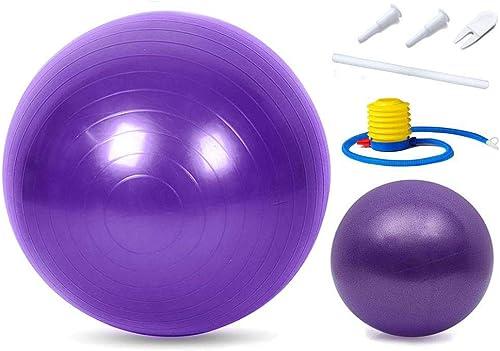 Linden Ridge Exercise Yoga Ball and Mini Pilates Ball Set Balance Stability Meditation Workout Fitness Gym Home Training
