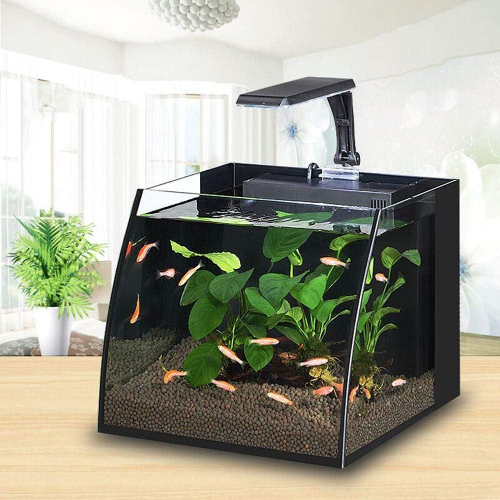 Suna Schreibtisch Aquarium ökologisches Kleines Glaswohnzimmer Das Ein Faules Aquarium Gestaltet Amazon De Haustier