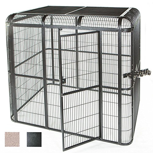 A&E Cage Co 62'' by 62'' Walkin Aviary, Black by A&E Cage Co.