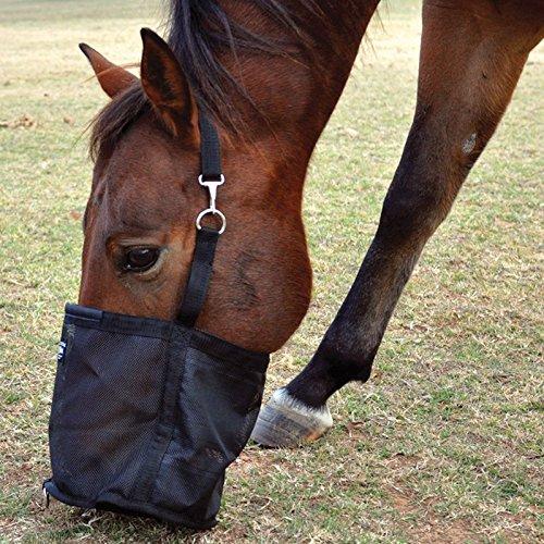 Cashel Feed Rite Bag by Cashel