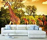 StickersWall Africa Safari Giraffes Animal Nature Wall Mural Photo Wallpaper Picture Self Adhesive 1110 ( 342cm(W) x 242cm(H)) by StickersWall