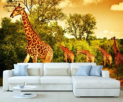 StickersWall Africa Safari Giraffes Animal Nature Wall Mural Photo Wallpaper Picture Self Adhesive 1110 ( 342cm(W) x 242cm(H)) by StickersWall by StickersWall