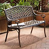 Rustproof Aluminum Outdoor Park Bench, Antique Copper Review