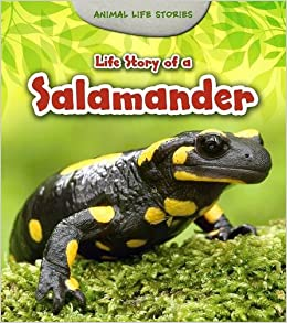 Life Story of a Salamander (Young Explorer: Animal Life Stories)