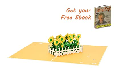 Amazon Sunflower Pop Up Card Birthday Popup Cards Flower 3d