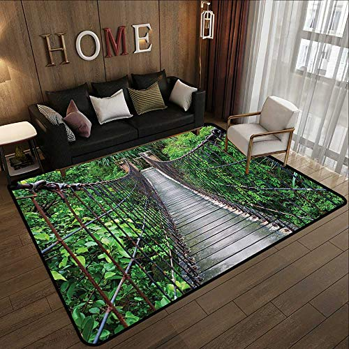 - Printed Carpet,Hawaiian Wildlife Nature Decor Collection,Rope Walkway Through The Trees Treetops in a Rain Forest,Green Black Gray 63